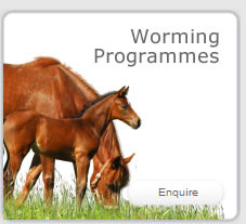 Worming Programmes