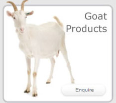 Goat Products